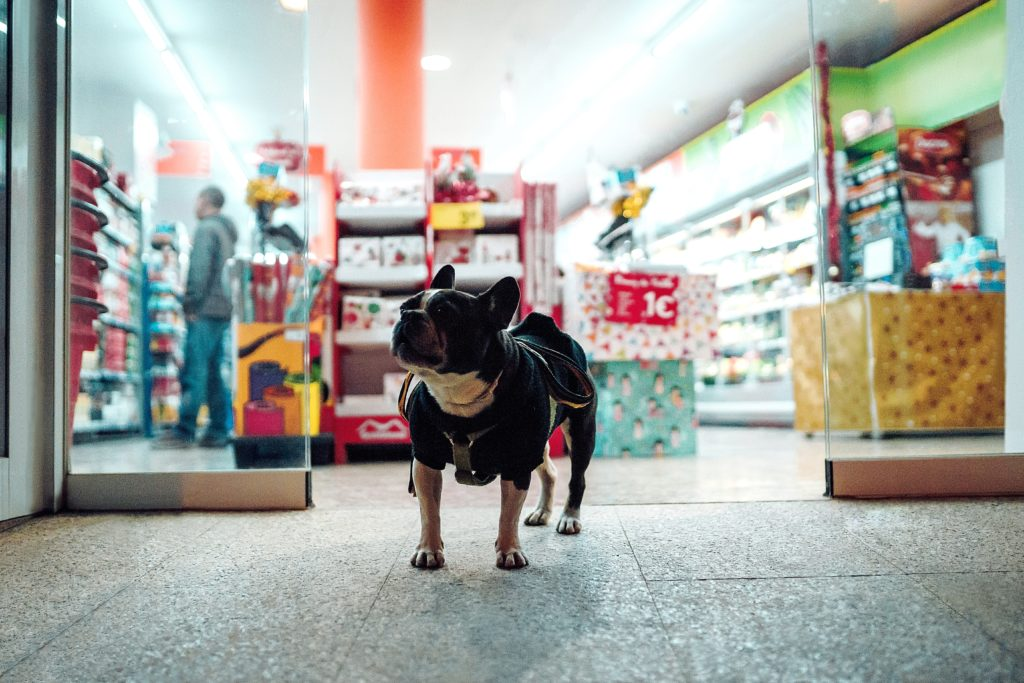 shoppings - pet friendly em porto alegre