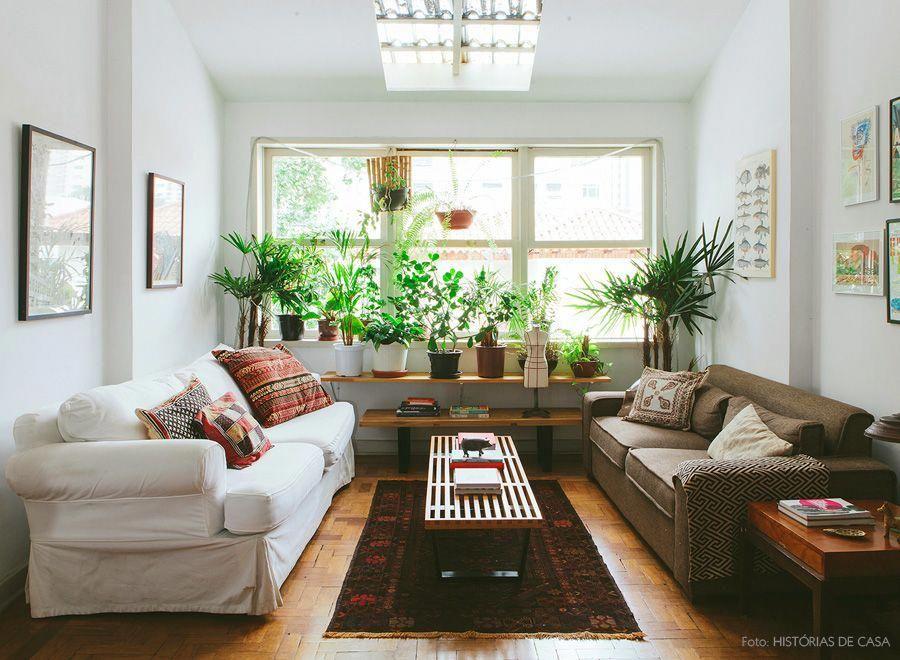plantas para a sala